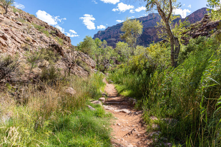 Grand Canyon - rim to rim hike along the Bright Angel trail as we approach Indian Gardens
